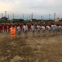 TM  FC フェルボールMIMOSA