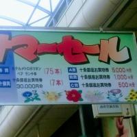 十条サマーセール@十条銀座商店街