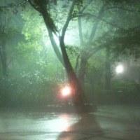 雨に煙るキャンパス