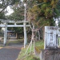 南方神社の大クス