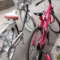 自転車磨きました