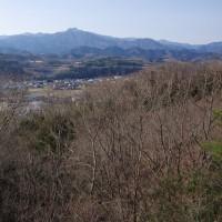 中継基地契約ついでに、神成山へオキナ草と9峰ハイキング、プラス福寿草!  2017.3.25