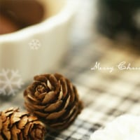 幸せすぎるクリスマス^^