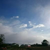 2017年1月15日 朝空