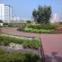 恵比寿アトレの屋上庭園