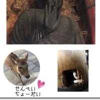古都奈良へ その1