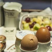 パリの茹卵