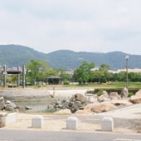 田井地区の歴史を歩く