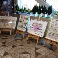 【告知】民生委員・児童委員活動パネル展を実施しています!