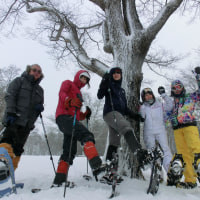 【LOC】1/15 《雪山体験》軽井沢 雪上キャンプ体験&スノーシューハイク(その2)