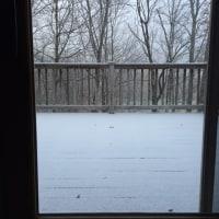 初雪が降った火曜日