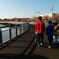 セレトナ朝のお散歩