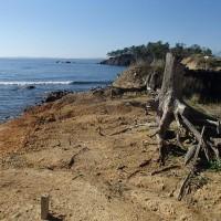 ひげおやじのこだわり農業 浜はまだまだ復興ならず