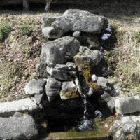 2011年3月10日の湧き水取り