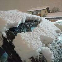 いやあ…降ったなー!大雪。