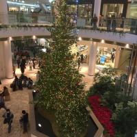 西日本最大級のショッピングセンター~☆