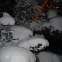 大雪ですね。