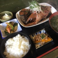 lunch〜♫
