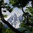 ふるさとの山番外の3山