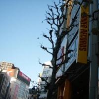 山手線渋谷駅(神南一丁目 タワーレコード)