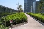 初夏の東京駅:キッテの屋上庭園「KITTEガーデン」から眺める東京駅 PART1