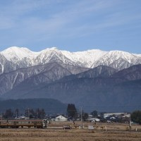 3月4日撮影 朝の飯田線から その6