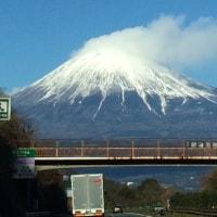 静岡に遠征