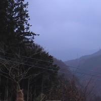 平成28年12月6日・今朝の東祖谷6.5℃