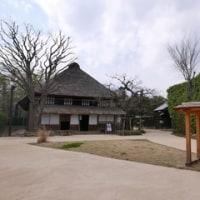 野川を歩く1:二子玉川〜柴崎