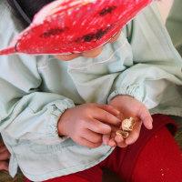 学校法人富美山学園 認定こども園 延岡望幼稚園のホームページへようこそ!