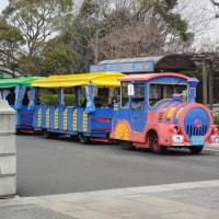 葛西臨海公園のバス