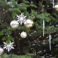 松本パルコのクリスマスツリー