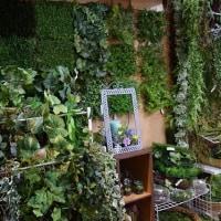 造花ココーフラワー横浜  フェイクグリーンの展示写真