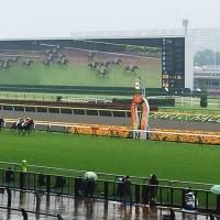 雨の東京競馬場・・・・