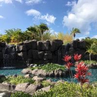 プールサイドにて(HAWAII2016)