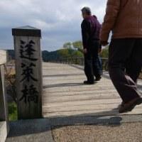 蓬莱橋とシャガ