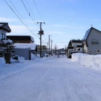 町内排雪  月命日  +35度