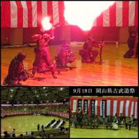 岡山県古武道祭演武画像UP