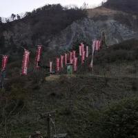 大鹿村の桜祭り
