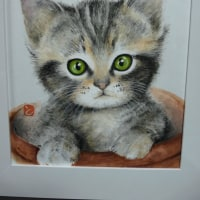 とよこの絵お目目のパッチリお話ししそうな子猫の絵を描きました。