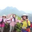 2017年6月10日の平治岳は満開だった