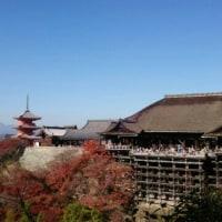 京都の紅葉で~す