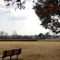広渡廃寺跡 2017.02.18
