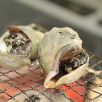根室海鮮BBQセット