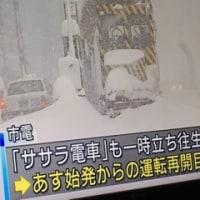 ドカ雪 4