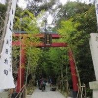 熱海に来たら行ってみたいオシャレな来宮神社