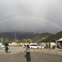 見上げる虹