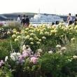 横浜都市緑化フェア、その後