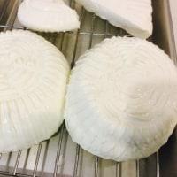 イタリアフレッシュチーズ作り