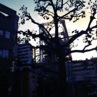 平尾駅近く